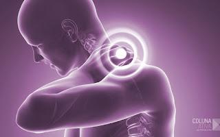 Programa: 8 Semanas de Tratamento para dores na Coluna Vertebral