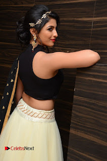 Actress Kruthika Pictures at Rojulu Marayi Movie Audio Release Function  0056