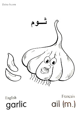 ثوم - Garlic- Ail