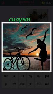 на берегу моря силуэты велосипеда и девушки с чайками в воздухе