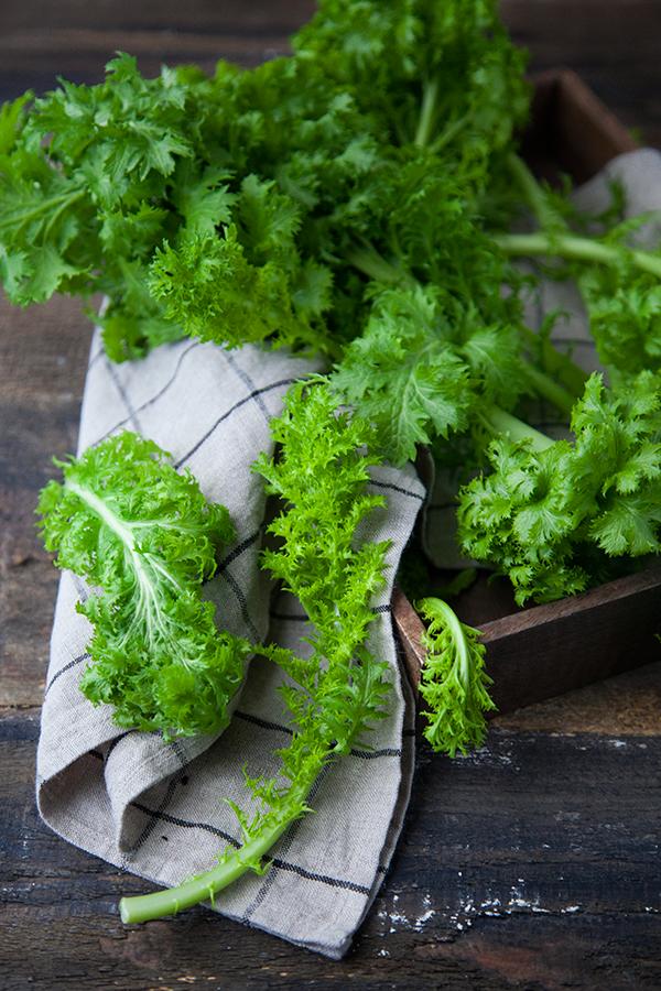 Wasabina, salade, bio, Marie Laforêt