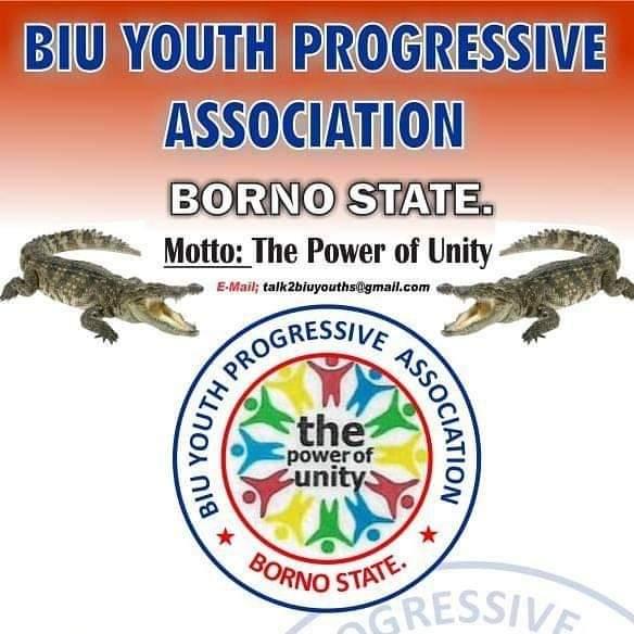 Biu Youth Progressive Association (BYPA)