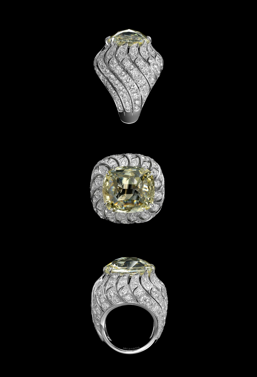 Passion For Luxury Cartier At The 26th Biennale Des