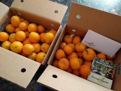 naranjas-mandarinas-online