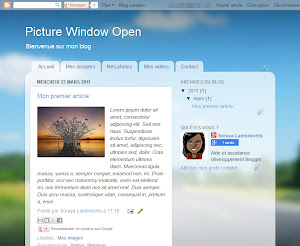 Picture Window Open Theme