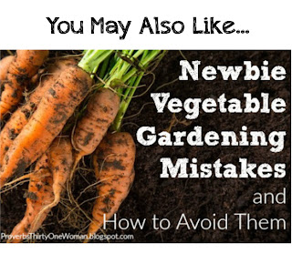 http://proverbsthirtyonewoman.blogspot.com/2016/05/newbie-vegetable-gardening-mistakes-and.html#.WIfEjvLkrcQ