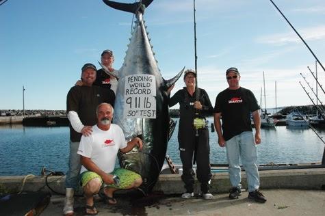 International Fishing News: CANADA: 911 lb Bluefin Tuna ...