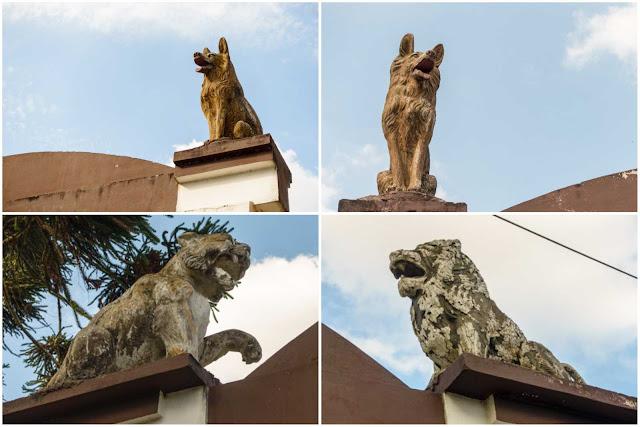 esculturas de leões e lobos