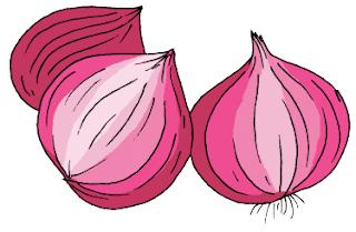 mengapa bawang merah disebut umbi lapis www.simplenews.me