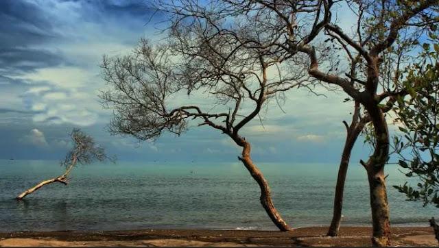 Pantai Ciewang - Wisata di Subang Terbaru