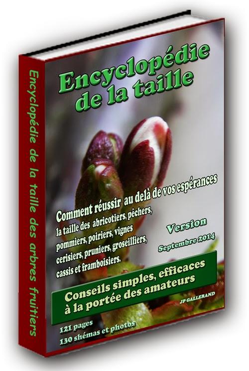 la taille des arbres fruitiers biologique l'encyclopédie