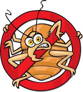 شركة مكافحة حشرات ورش مبيدات بعرعر