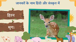 Deer name in sanskrit and hindi with images