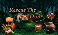 Top10NewGames - Rescue The Owl
