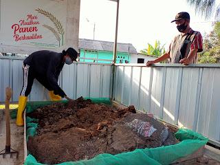 Petani dari Gapoktan Saluyu di Cilamaya bekerja dan beradaptasi dengan situasi pandemi.