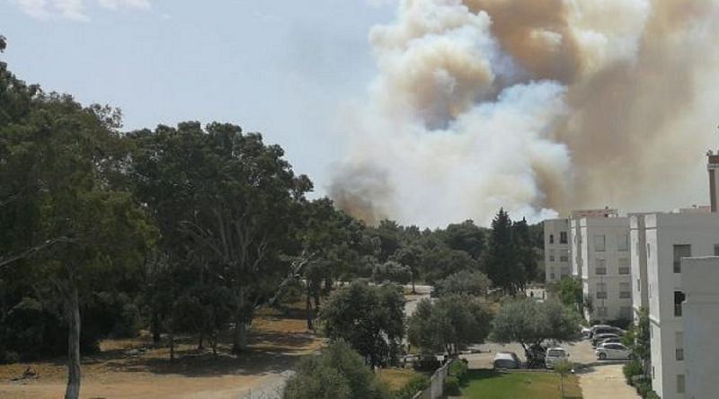 """استنفار بسبب حريق كبير نشب قرب مستشفى ميداني لعلاج """"كورونا"""" بطنجة (فيديو)"""