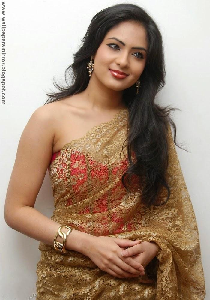 bollywood actresses saree patel actress nikesha stills heroine wallpapers nikeesha sarees tamil tollywood actor golden colour designer cute puli nikisha