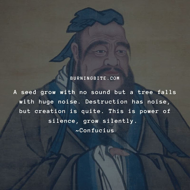 A seed grow with no sound but a tree falls with huge noise. Destruction has noise, but creation is quite. This is power of silence, grow silently. ~Confucius