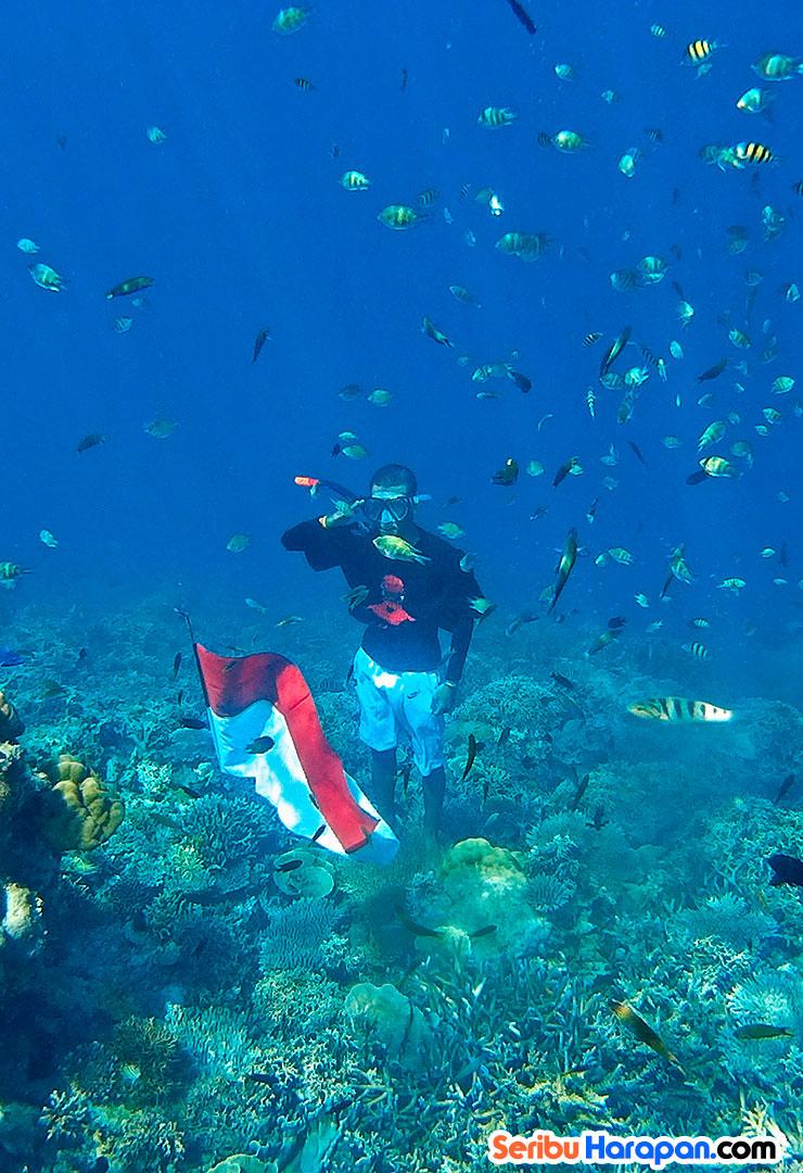 underwater pulau harapan