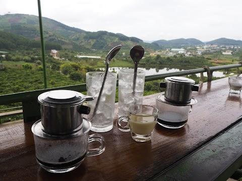 Wizyta na plantacji kawy w Wietnamie