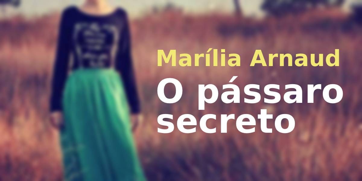literatura paraibana marilia arnaud livro passaro secreto jose nunes