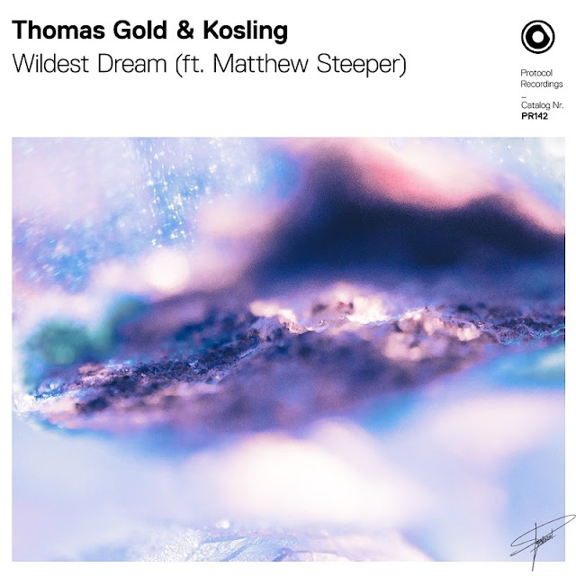 Thomas Gold and Kosling Unveil Inspiring New Single 'Wildest Dream'