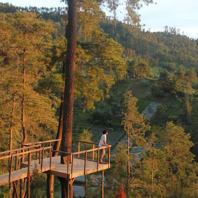 Rute Dan Lokasi Tenggir Park Ngargoyoso Karanganyar