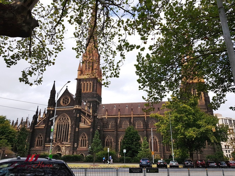 melbourne sightseeing st patrick cathedral