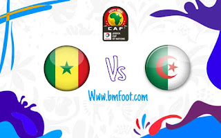 مشاهدة مباراة الجزائر ضد السنغال بث مباشر