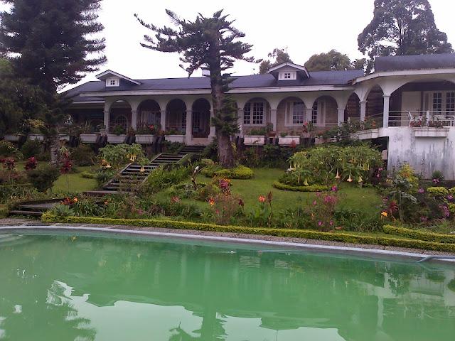 Sewa villa coolibah puncak dengan kolam renang private