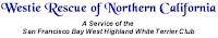 Da Westie Rescue ob Northern California