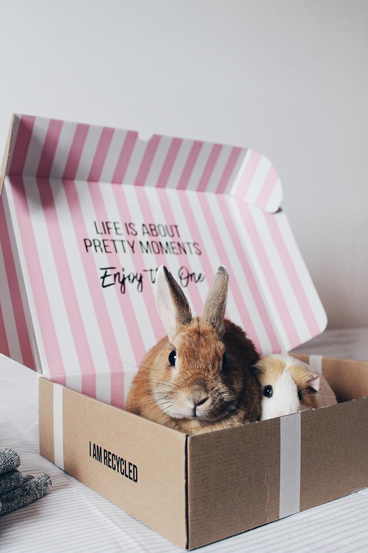 caja hunkemoller conejo littleblackcoconut
