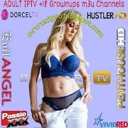 IPTV ADULT Updated m3u Lists Channels 26/07/2021
