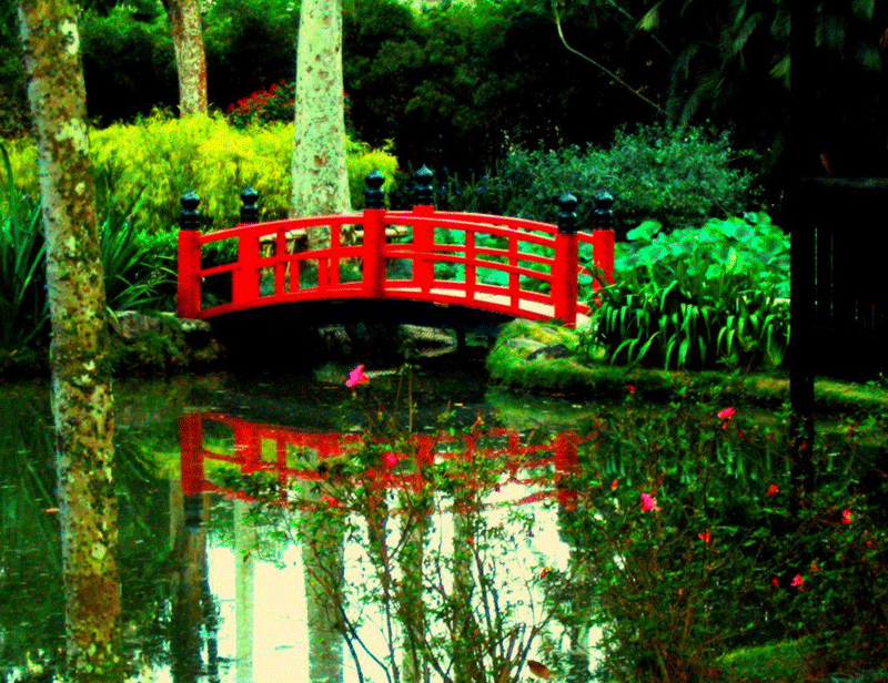 Jardín Japonés Río de Janeiro