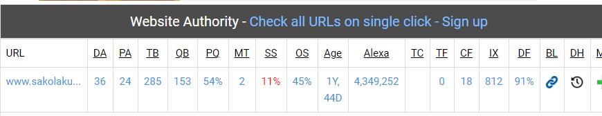 Statistik SEO Check