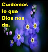 Cuidemos lo que Dios nos da