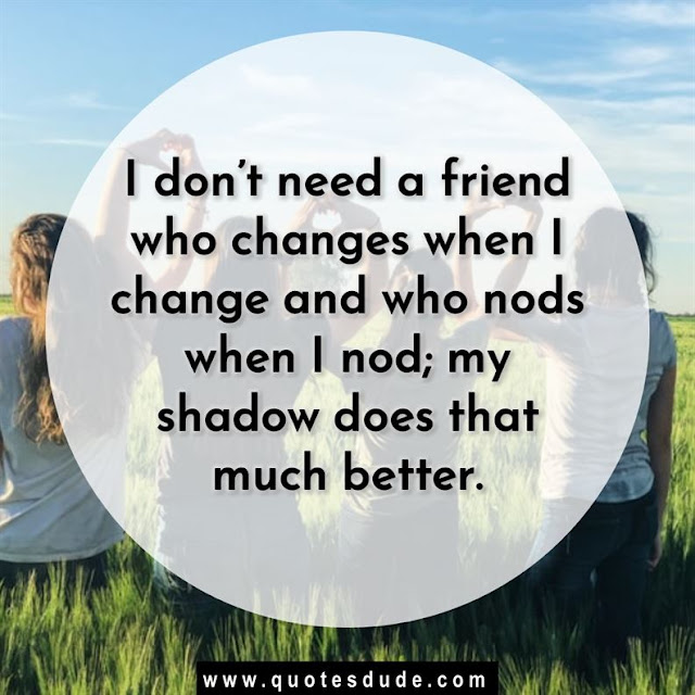 Best Friend Quotes for People and Family.