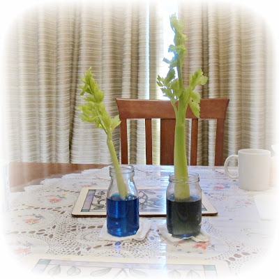 image food colouring and celery