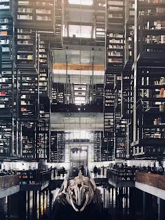 La biblioteca Vasconcelos (p. 305)