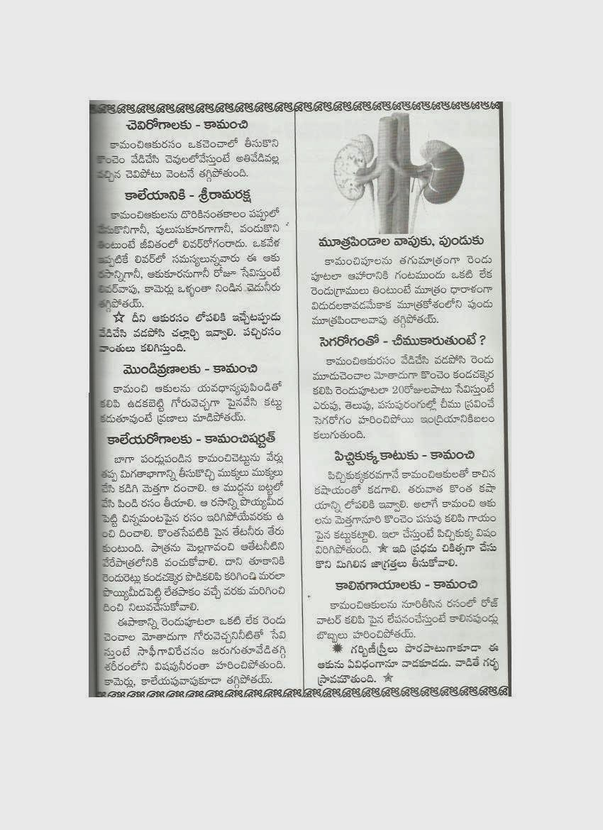 AYURVEDAM - ఆయుర్వేదం: December 2011