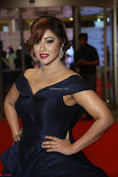 Payal Ghosh aka Harika in Dark Blue Deep Neck Sleeveless Gown at 64th Jio Filmfare Awards South 2017 ~  Exclusive 125.JPG