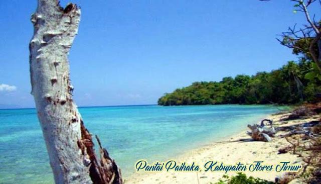 Pantai Paihaka