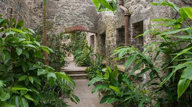 Aberglasney, un jardín perdido en el tiempo y bellamente restaurado