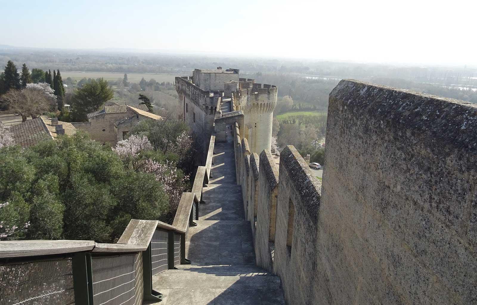 Villeneuve-lès-avignon Fort Saint-André