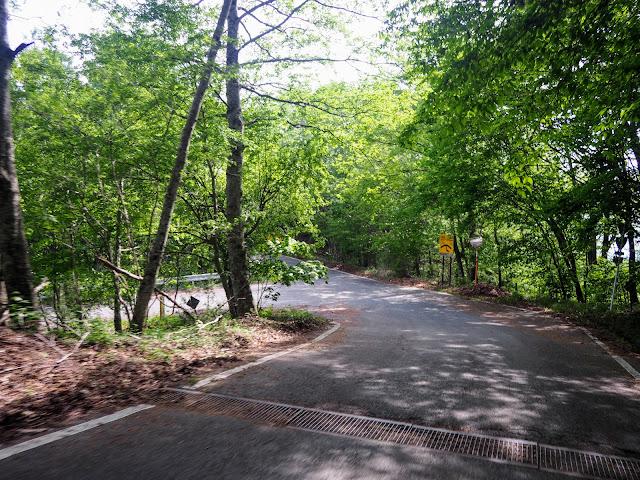林道水ヶ森線