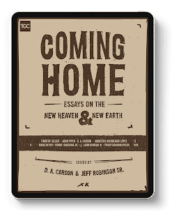Coming Home Book On Heaven