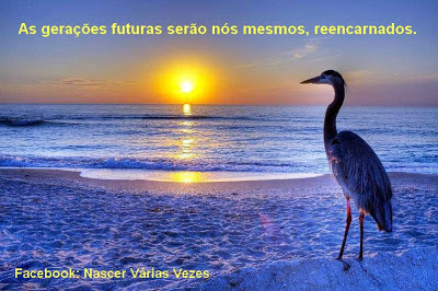 Ecologia e espiritualidade: as gerações futuras serão nós mesmos, reencarnados. Reencarnação