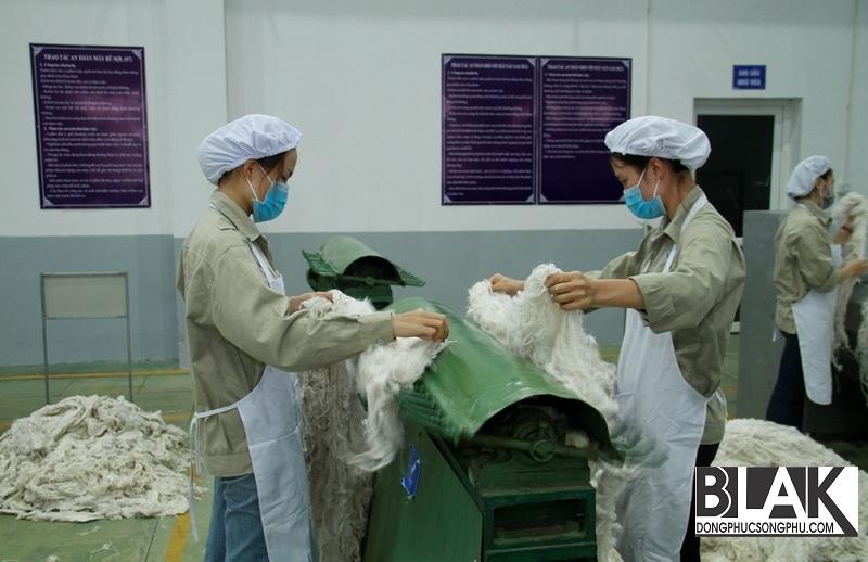 Sợi gai tiếp tục được cho vào máy bung để loại bỏ tạp chất