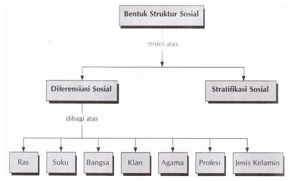 Pengertian Struktur Sosial: Fungsi, Ciri-Ciri, Bentuk, dan Contoh