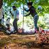 Alcaldía de Popayán continúa embelleciendo parques de la ciudad.
